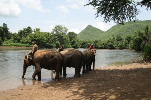 Die Elefantenwelt liegt direkt am Kwae Yai Fluss