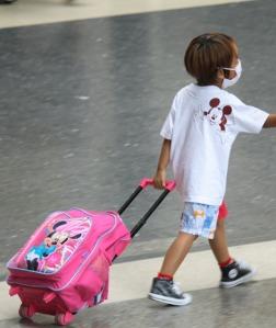 Unbesorgt reisen mit Mundschutz gegen Schweinegrippe