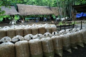 """Hier wird aus Reis """"Medizin"""" gemacht: Schnapsbrennerei außerhalb von Keng Tung"""