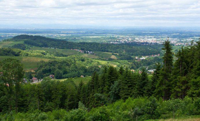 Region Oberrhein © NFI